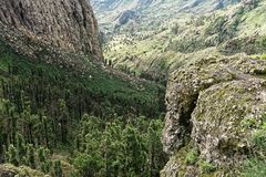 Rocky Ravine in La Gomera Royalty Free Stock Photography