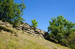 Rocky Ridge sulla flora del fondo Immagine Stock Libera da Diritti