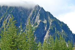 Rocky ridged mountain and pine trees. Cloud capped Rocky ridged mountain and pine trees Royalty Free Stock Images