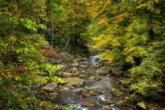 Rocky River In Autumn foto de archivo