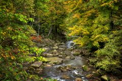 Rocky River In Autumn. A beautiful wooded river scene during autumn colors. Taken at Berea Falls in Berea Ohio stock photo