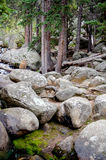 Rocky river bed Royalty Free Stock Photos
