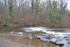The Rocky River. The river current travels through the forest and falls down the rocks Stock Photo