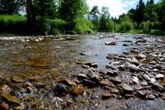 Rocky River die een bosopen plek kruisen Royalty-vrije Stock Fotografie