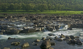 Rocky River and Forest India Stock Photo