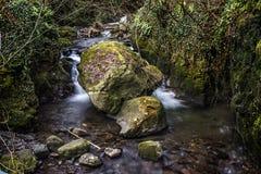 Rocky River i Alva Glen Scotland Arkivbilder