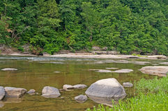 Rocky River Shore. A rocky river shore with woods in the background royalty free stock photo