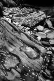 Rocky Riverbank Kicking Horse River image stock