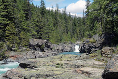 Rocky Riverbank in una foresta sempreverde fotografie stock