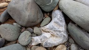 Rocky riverbed. Closeup of different colored riverbed rocks Stock Image