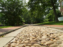 Rocky road. This rocky road is in Philadelphia near Independence Hall royalty free stock photos