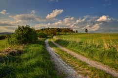 Rocky road. Between fields and pastures in the spring evening Stock Photos