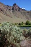 Rocky, Salmon River Canyon - Idaho Royalty Free Stock Image