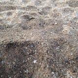 Rocky Sand Fotografia de Stock