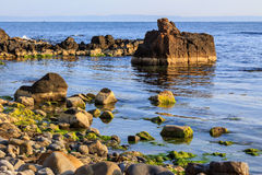 Rocky sea coast horizon with seaweed Stock Photography