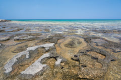Rocky sea floor. And crystal clear water Stock Photos