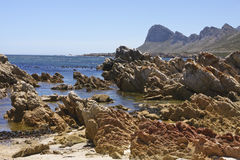 Rocky Sea Landscape. A rocky sea landscape of Pringle Bay in Cape Town Stock Photos