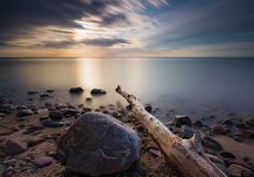 Rocky sea shore with driftwood at sunrise. Beautiful seascape Stock Image
