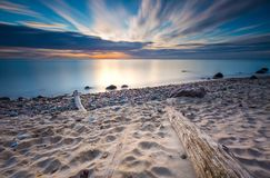 Rocky sea shore with driftwood at sunrise. Beautiful seascape Royalty Free Stock Photo
