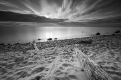 Rocky sea shore with driftwood at sunrise. Beautiful seascape Stock Photos