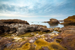 Rocky Seascape. Seascape from Biarritz, Pays Basque. Water holes, sea weed on the rocks under a creamy sky Stock Photography