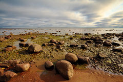 Rocky seashore Royalty Free Stock Photo