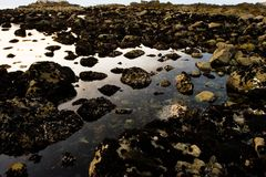 Rocky Seashore. Rocky shoreline with a tide pool Stock Image