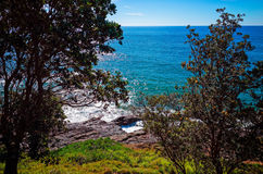 Rocky seashore near Town Beach at Port Macquarie Australia. Rocky seashore at Port Macquarie Australia. Big jagged rocks near Town Beach seen from between trees Royalty Free Stock Photo