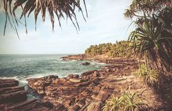 Rocky seasidein vintage style filter. Ocean scene with calm waves, wooden grove, aloe vera and coconut trees around. Tropical landscape at sunny weather Royalty Free Stock Photography