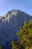 Rocky sewn in the White Mountains Stock Photography