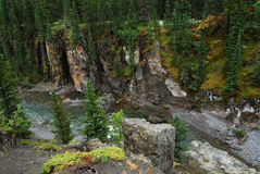 Rocky sheep river bed Royalty Free Stock Photos