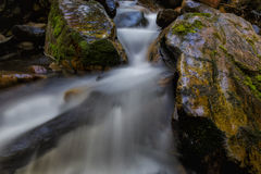 Through the Rocky Shoot. Wasatch Mountain Waterfall in slow motion in Utah USA Stock Photography