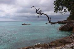 Rocky shore tropical island Stock Photos