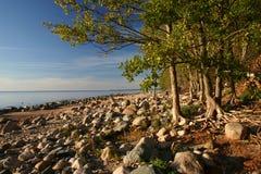 Rocky shore Stock Photos