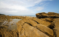 Rocky shore. Marine rocky shore. Visible structure of brown stone. Cloudy sky Royalty Free Stock Image