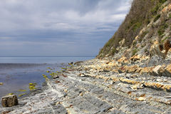 Rocky shore. Stock Photos