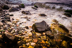 Rocky Shore Detail Royalty Free Stock Image