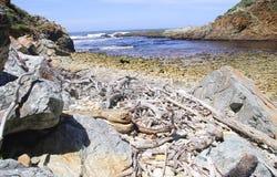 Rocky shore Royalty Free Stock Photo