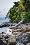 Rocky shore at East Sooke Regional Park, near Victoria, BC Stock Photography