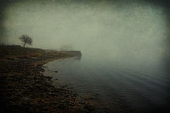 Rocky shore in the fog Stock Photography