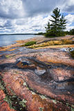 Rocky shore in Georgian Bay Stock Photos