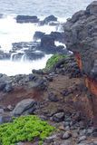 A Rocky Shore - Kauai, Hawaiian Islands Stock Photos