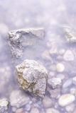 Rocky shore of the lake Stock Image