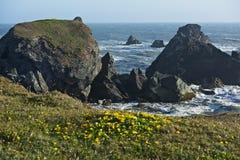 Rocky Shore Landscape Imagen de archivo libre de regalías