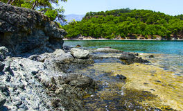 Rocky shore of the Mediterranean sea. Phaselis. Turkey. Royalty Free Stock Images