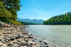 Rocky shore of a mountain river Katun. Stock Photo