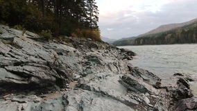 Rocky shore of a mountain river Katun in Altay. The rocky shore of a mountain river Katun in Altay, Russia stock video footage