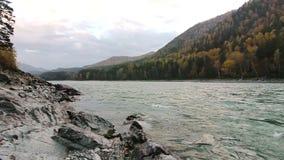 Rocky shore of a mountain river Katun. The rocky shore of a mountain river Katun in Altay, Russia stock video