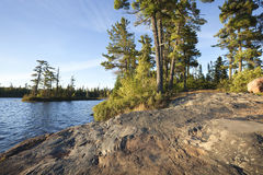 Rocky shore with pine trees on a Boundary Waters lake in Minneso Stock Image