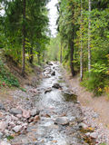 Rocky shore river Stock Photography